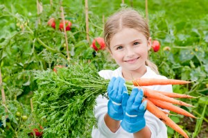 5-Tips-for-Growing-Your-Own-Organic-Food